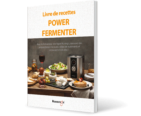 yaourtiere fromagere livre recettes